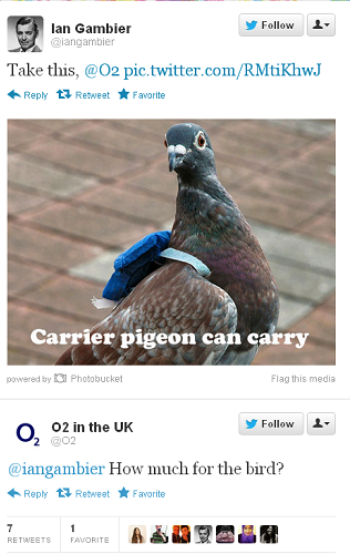 02 Carrier Pigeon Response
